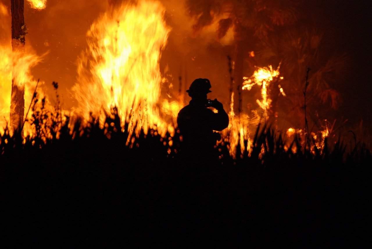 feu de broussailles