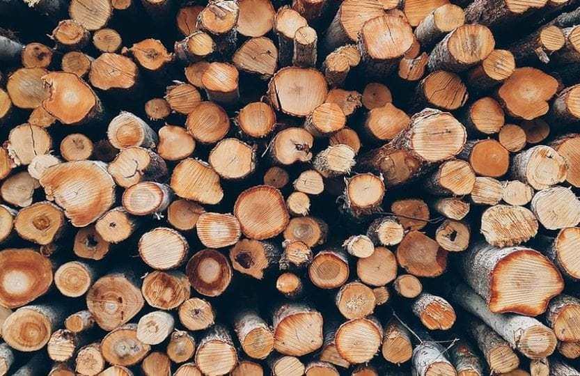 debitage bois buches