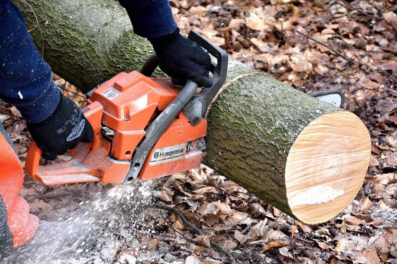 debitage bois tronconneuse