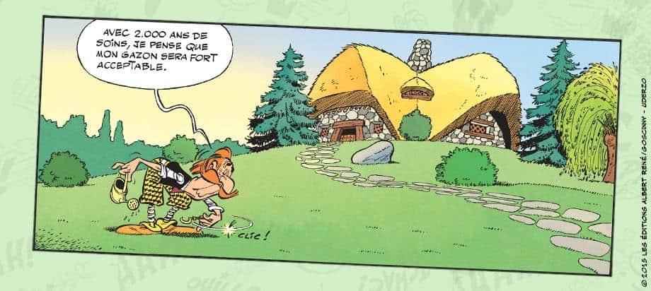 gazon asterix