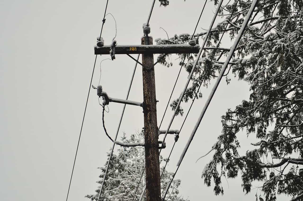 elagage arbre electricité