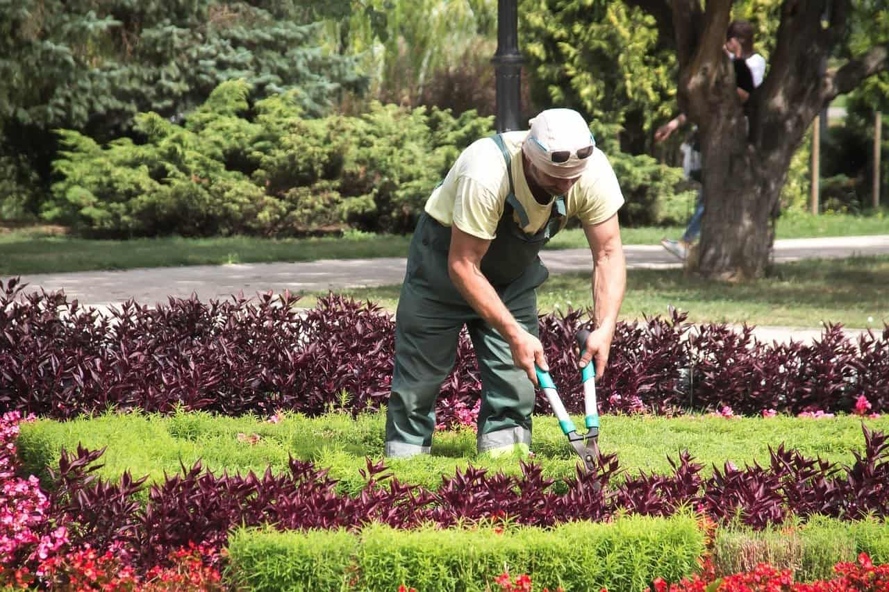prix entretien jardin