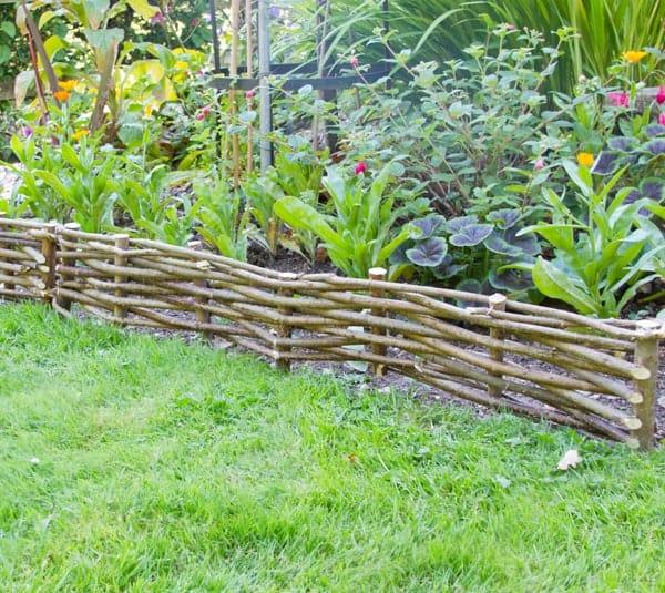 bordure jardin noisetier