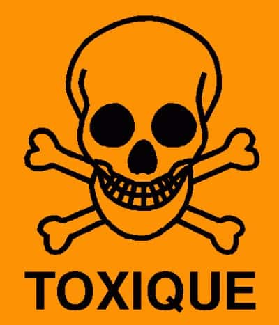 laurier toxique