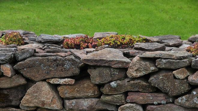 mur clôture