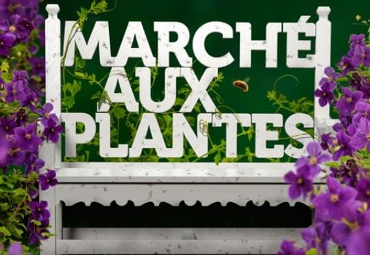 marché aux plantes