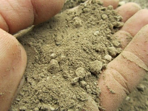 terre sableuse