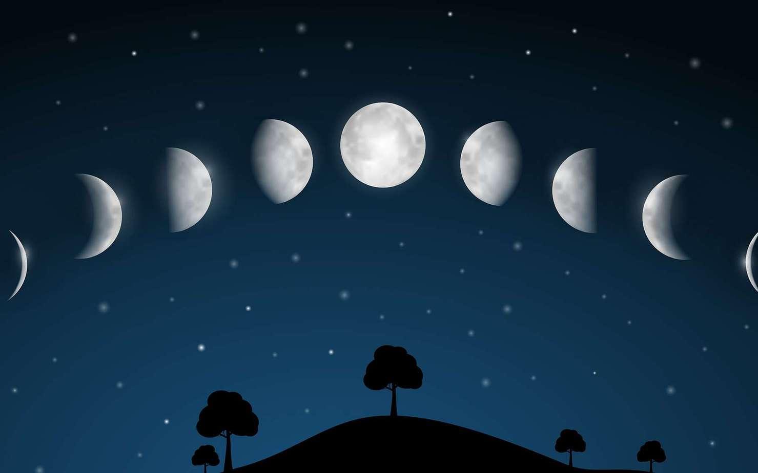 calendrier jardinage lunaire