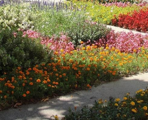 exposition jardin potager
