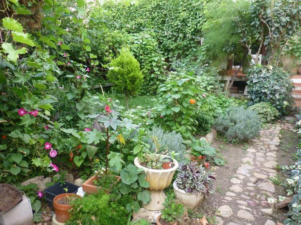 aménager jardin de curé