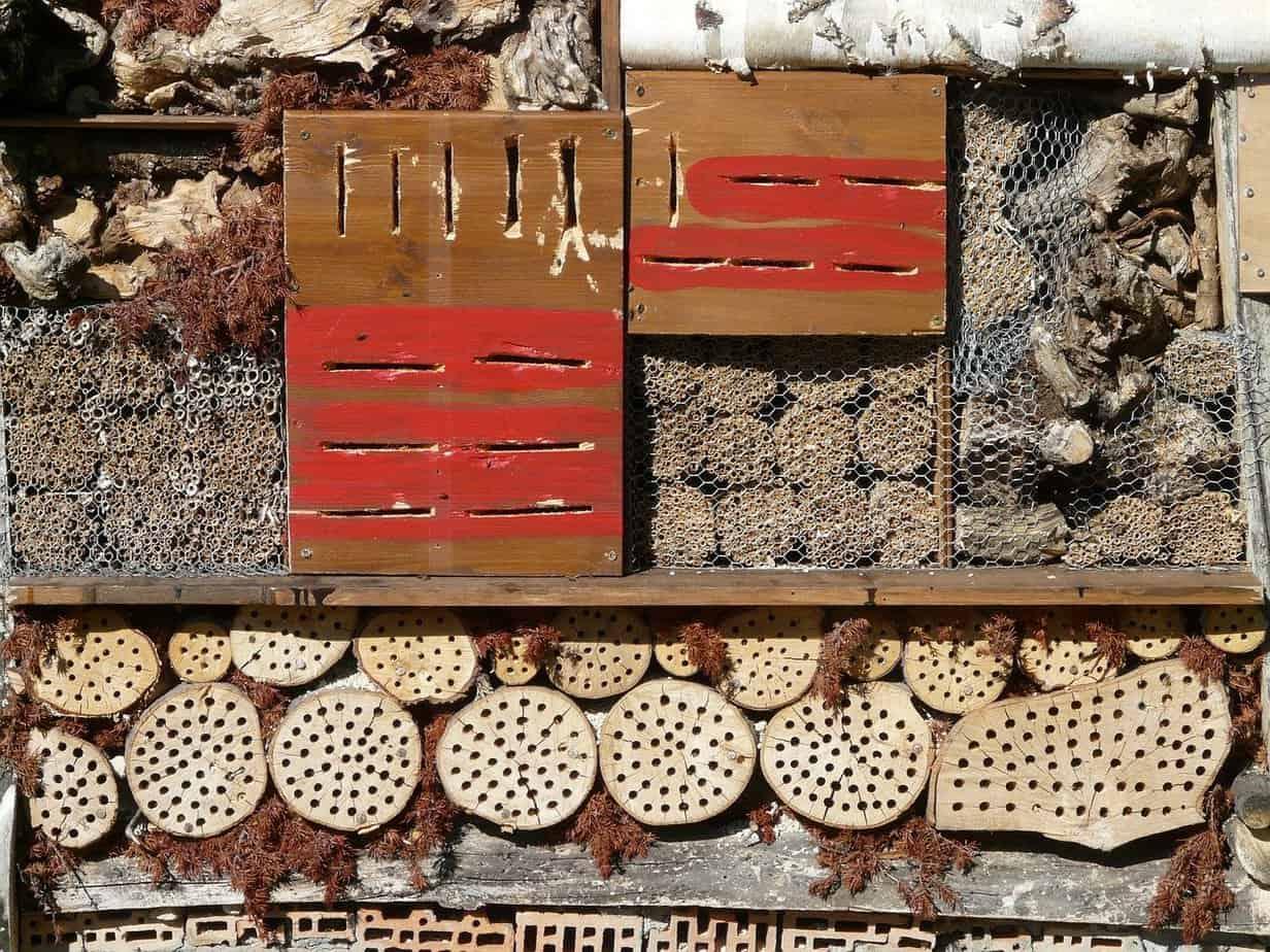 décoration jardin écologique