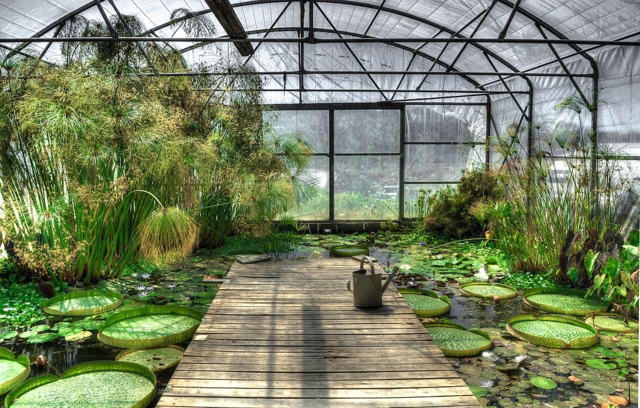 jardin exotique asiatique