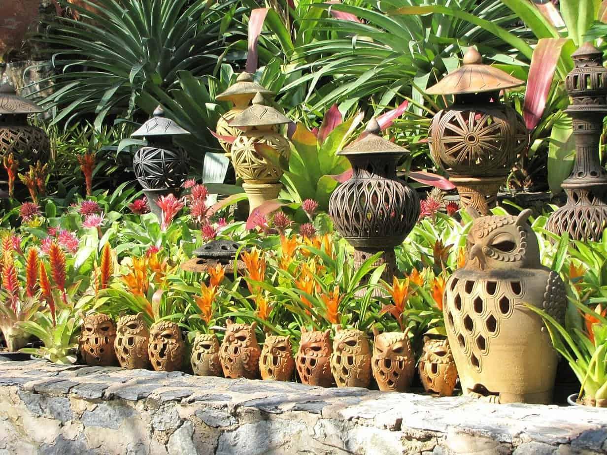 amenagement jardin exotique