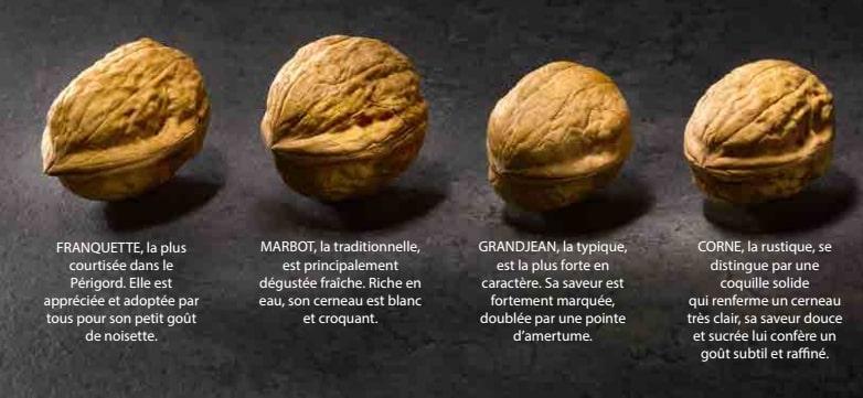 varietes noix