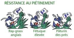 résistance ray grass