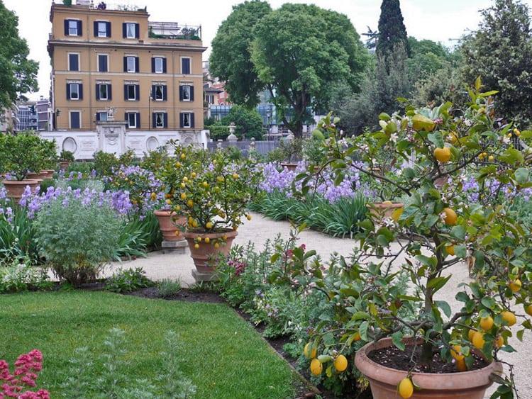 végétaux pour jardin italien