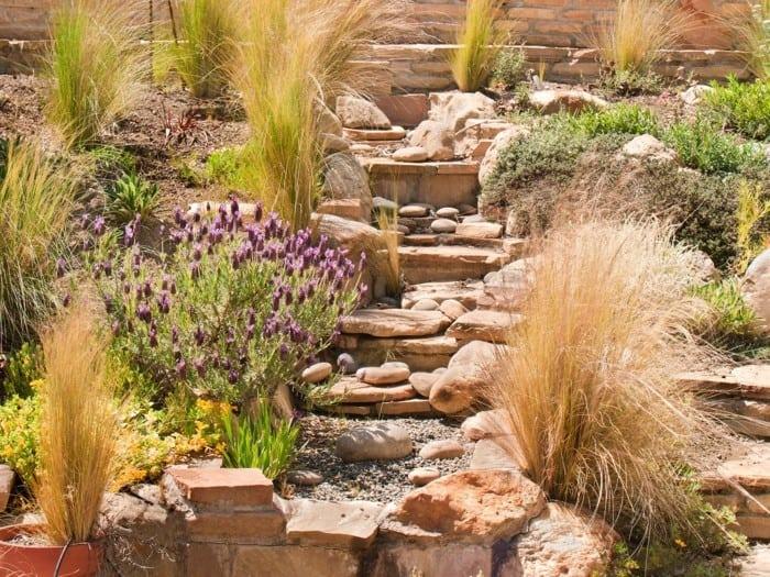 exemple jardin de rocaille