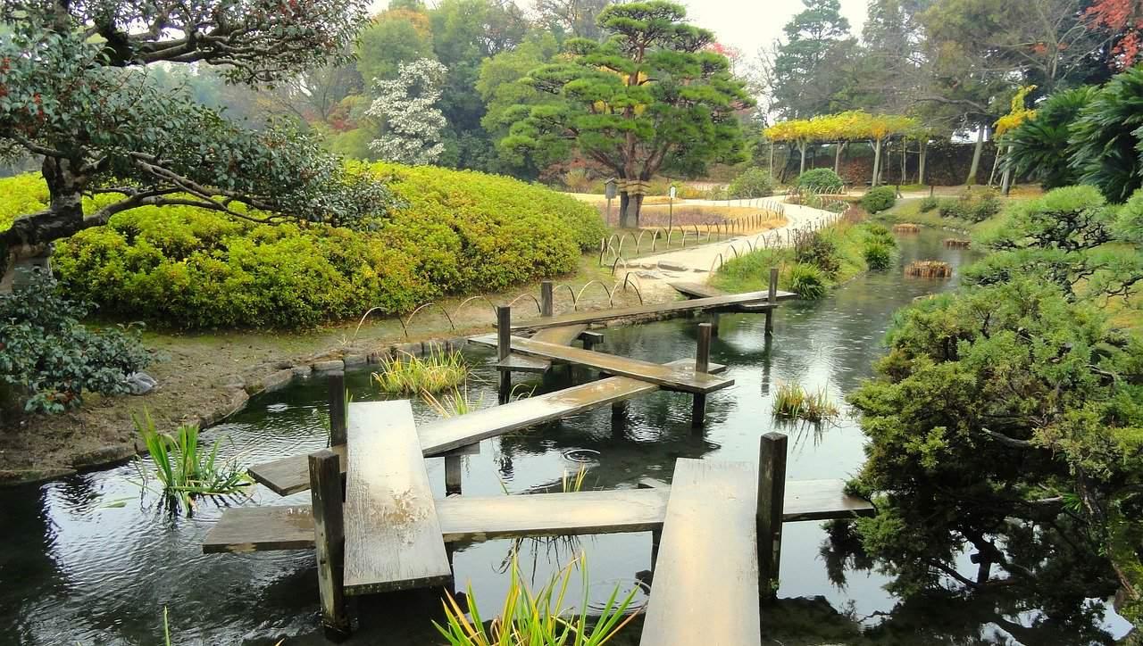 harmonie jardin japonais
