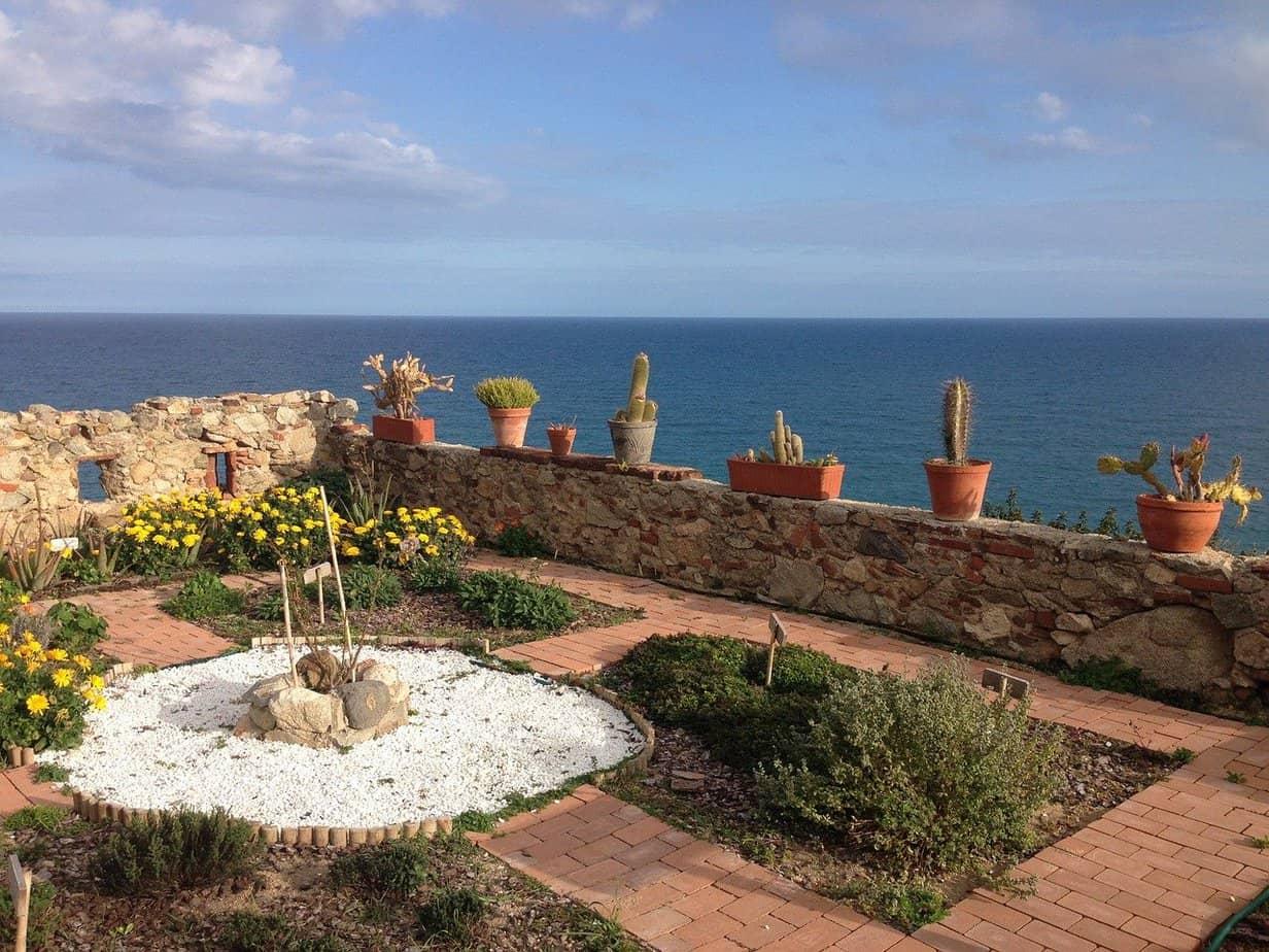 exemple de jardin mediterraneen