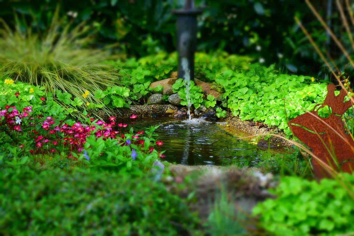 point d'eau permanent dans le jardin