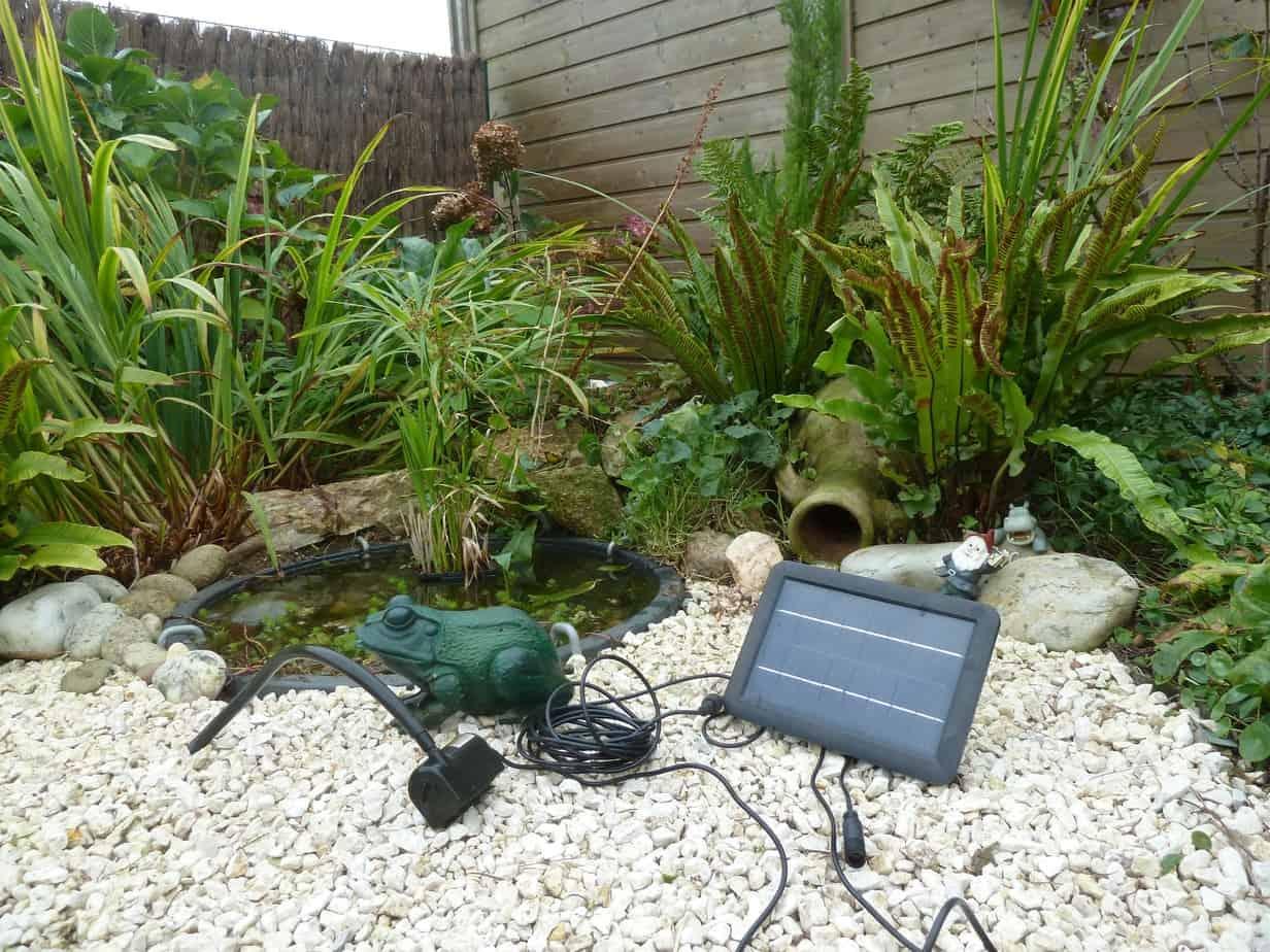 pompe bassin de jardin (10)