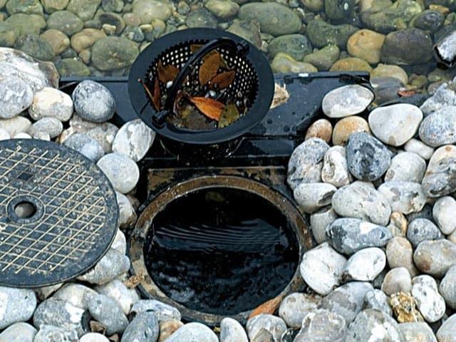 entretien de bassin de jardin (1)