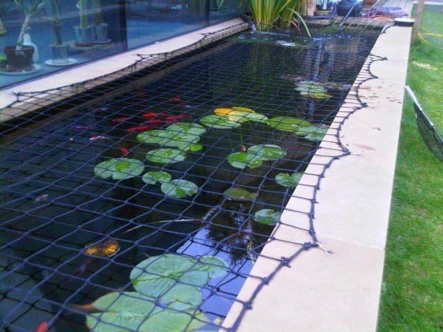 filet pour bassin de jardin