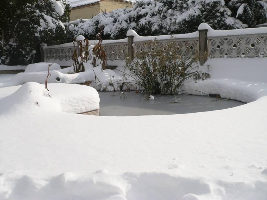 bassin de jardin en hiver