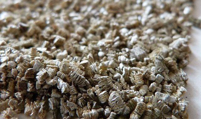 gazon et vermiculite