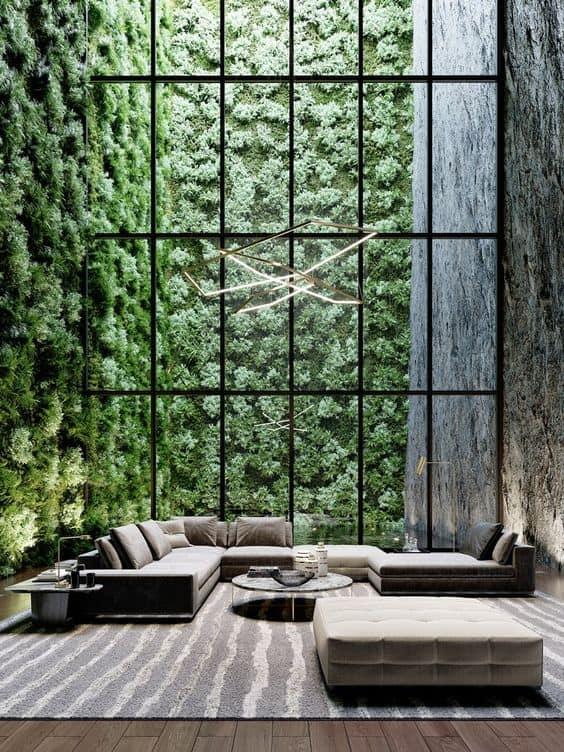 plante pour patio