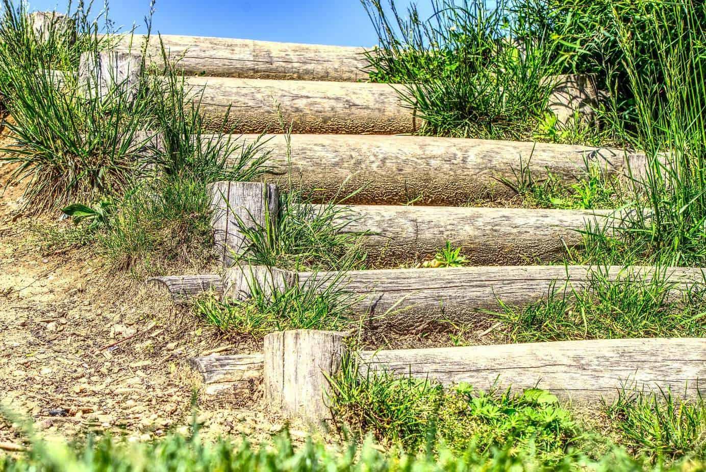 bois pour escalier extérieur