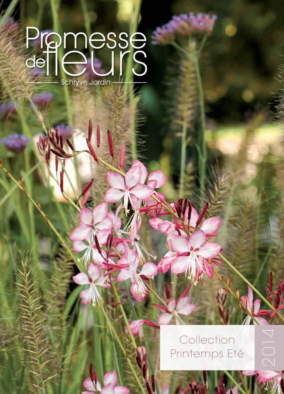catalogue promesse de fleurs