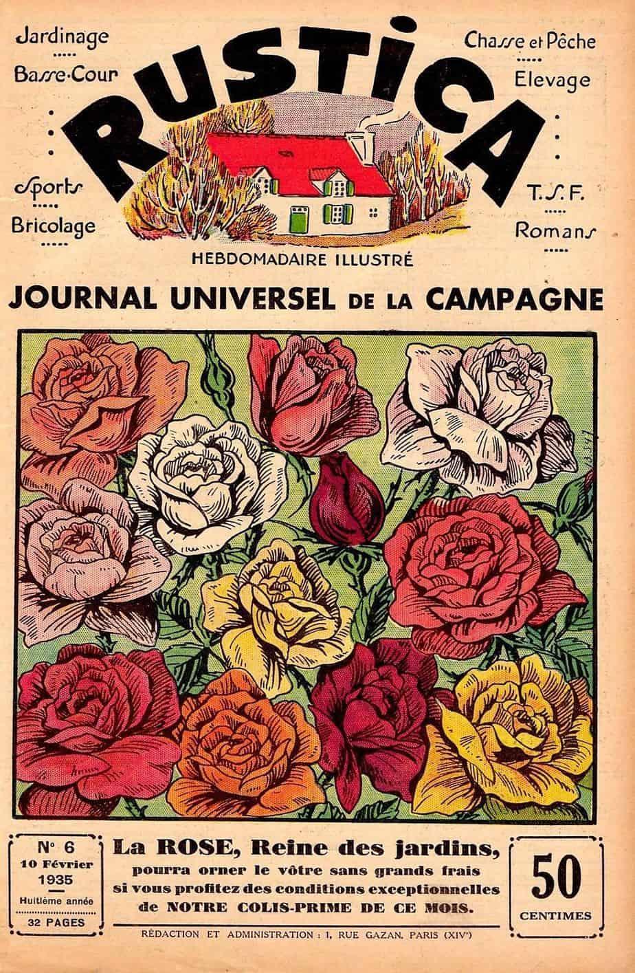 magazine rustica